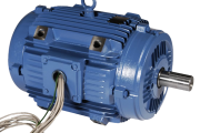 Low Voltage Motors - IEC / Two Speed