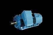 H Line - HGF - High Voltage - TEFC